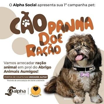 Rede Alpha Fitness promove 'Cãopanha' para arrecadação de ração para animais acolhidos em abrigos
