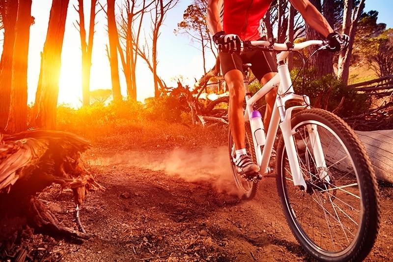 12 motivos para adotar a bike este ano
